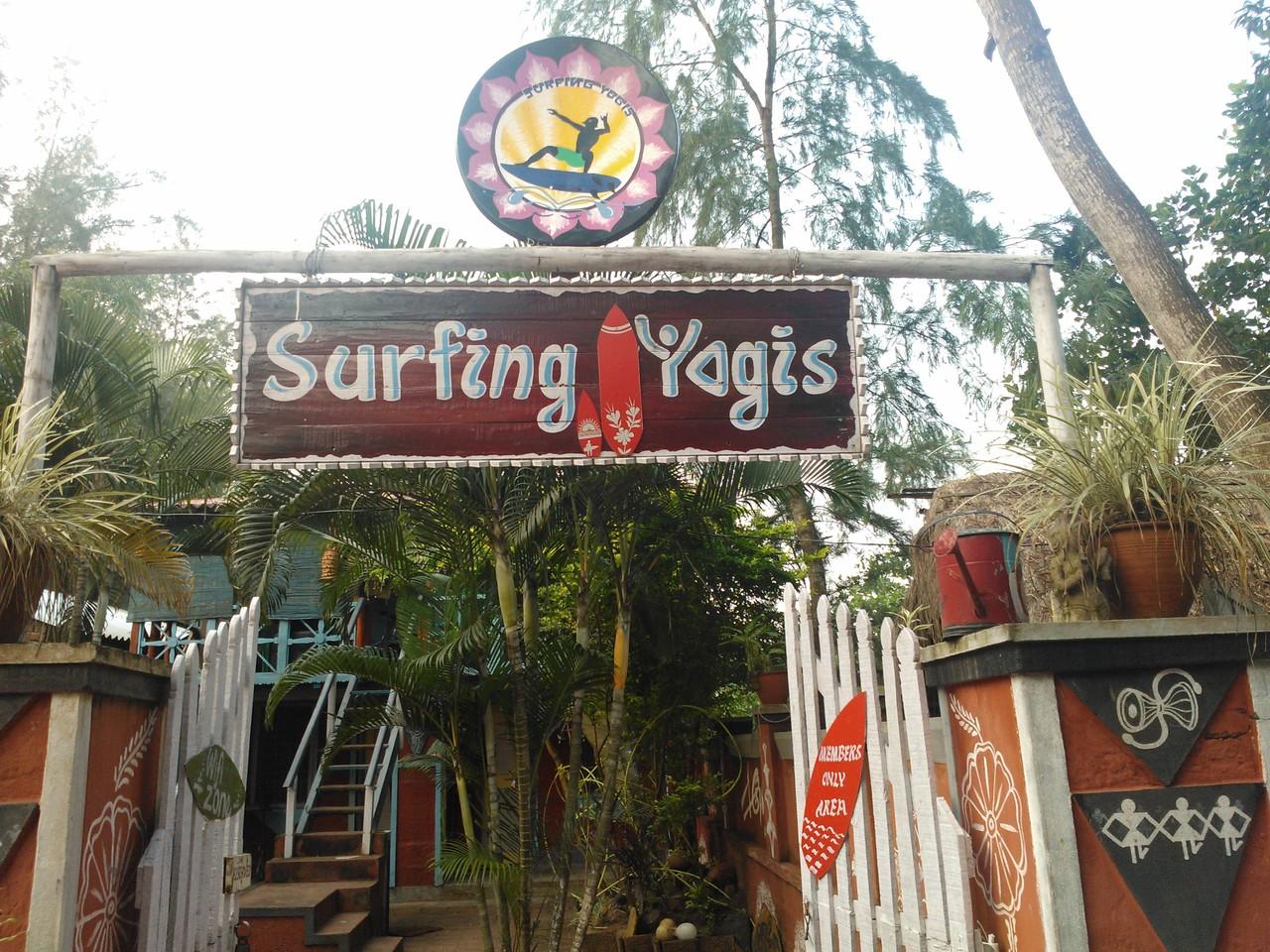 surfing yogis