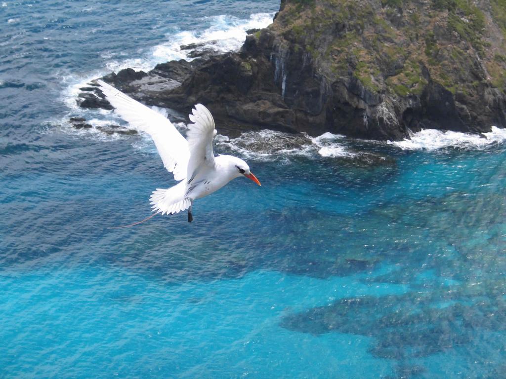 Howe Island