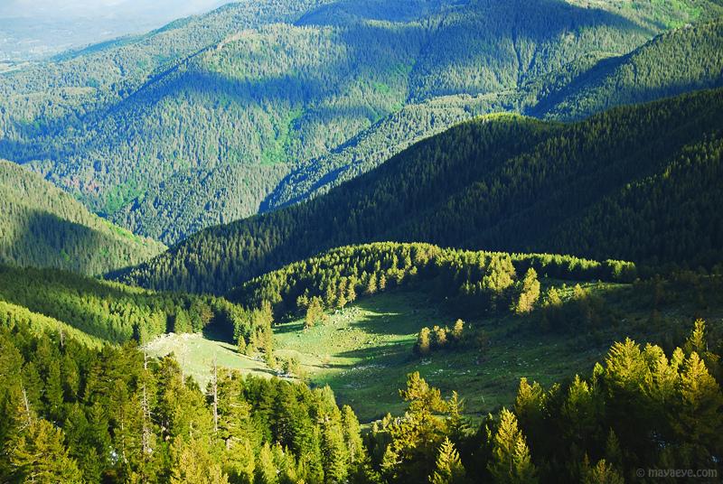 Pirin National Park