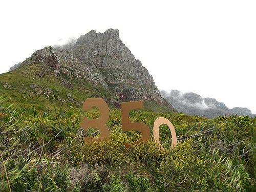 Cape floral region