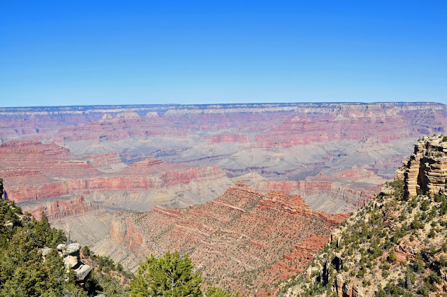 Spectacular Red Cliffs Grand Canyon