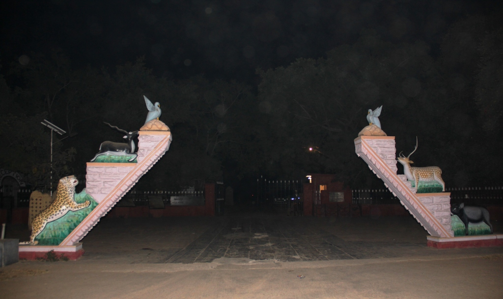 Keoladeo National Park at Night