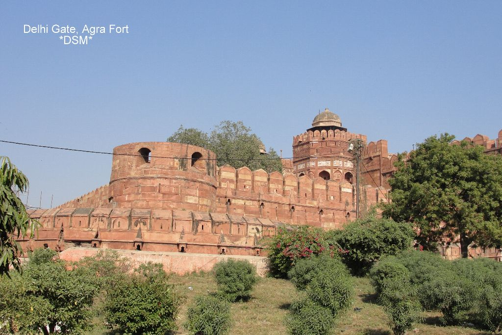 Agra Fort (12)