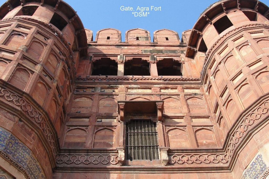 Agra Fort (33)