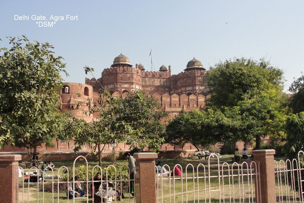 Agra Fort (4)