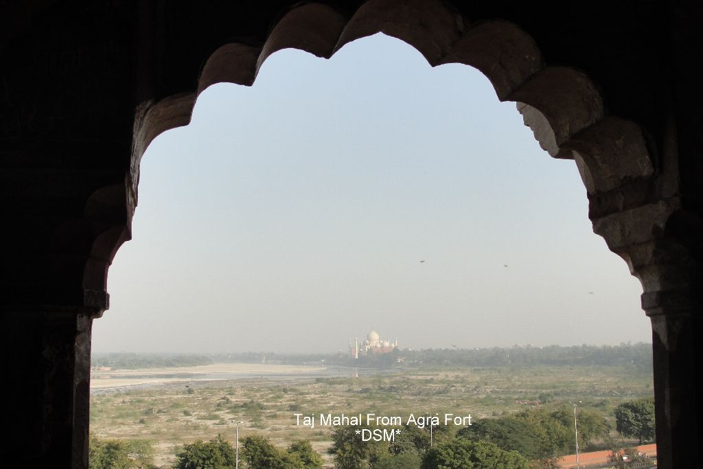 Agra Fort (79)