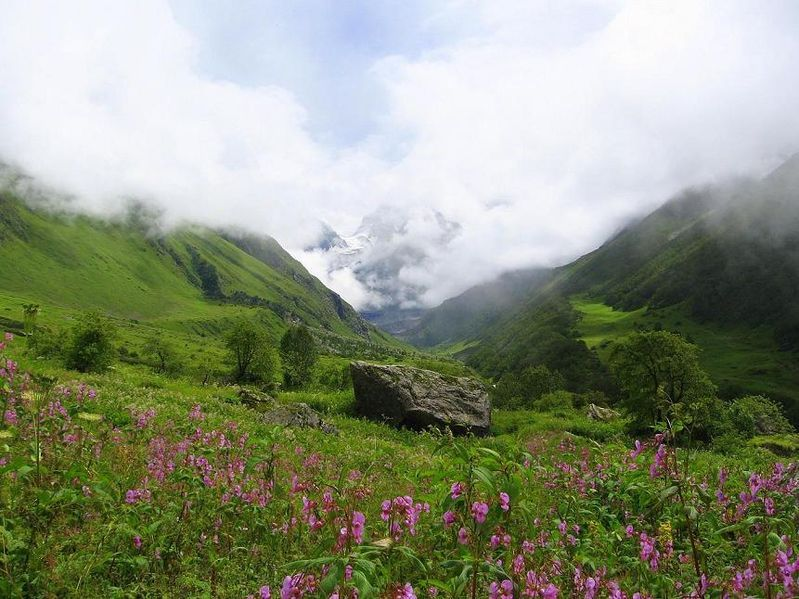 799px-Valley_of_flowers_uttaranchal_full_view