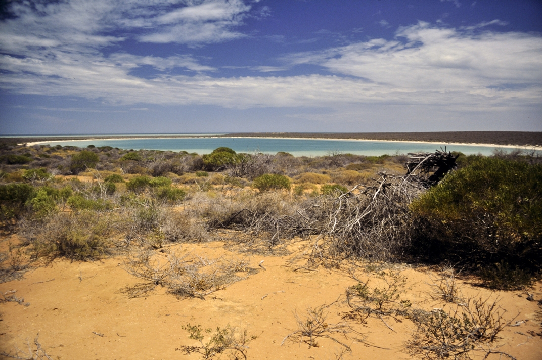 Ningaloo Coast - Australia Cathrin Eszbach