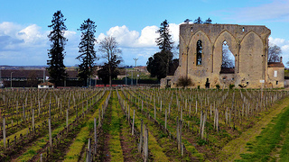 Viticulture Landscape & Europe's Largest Monolithic Church