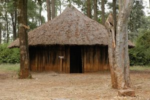 Exploring Cultures: Homesteads and Huts of Various Kenyan Ethnic Groups