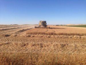 Agriculture in Castilla y León, Spain