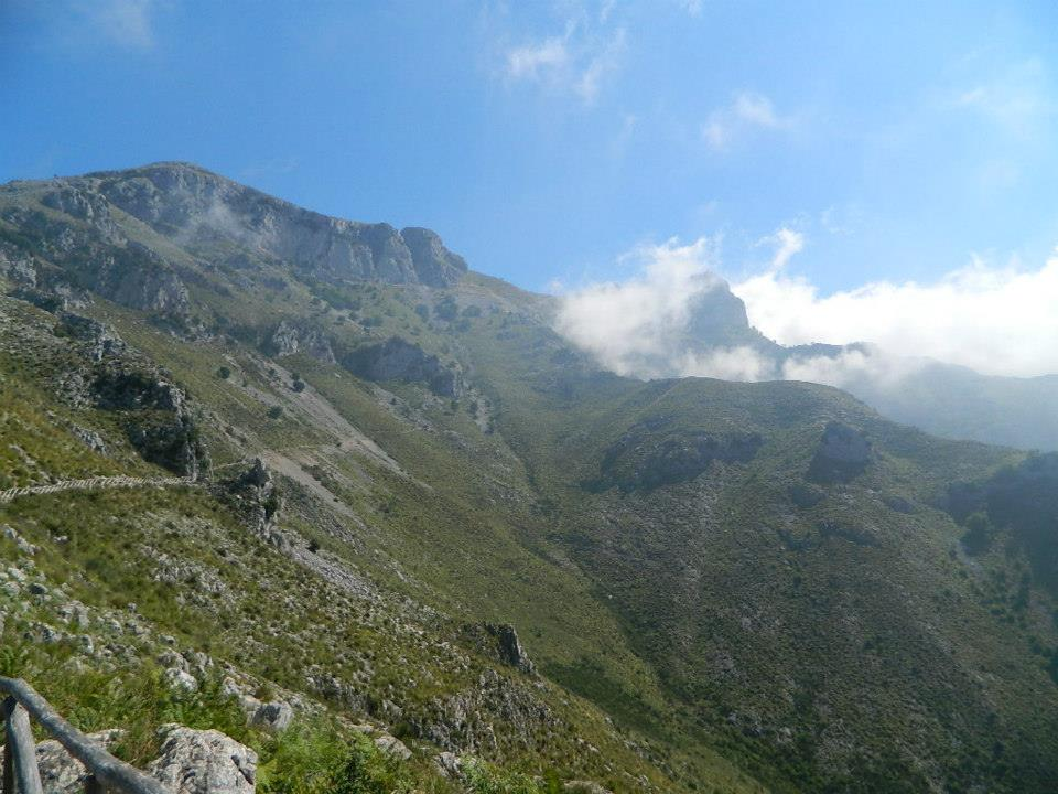 Image 3 - The mountain trail