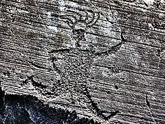Vast collection of rock drawings in Valcamonica Rock Drawings in Valcamonica - Italy Trailblazer