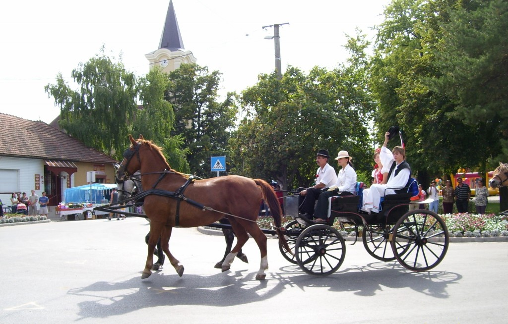 Csősz pair on a horse-drawn carriage