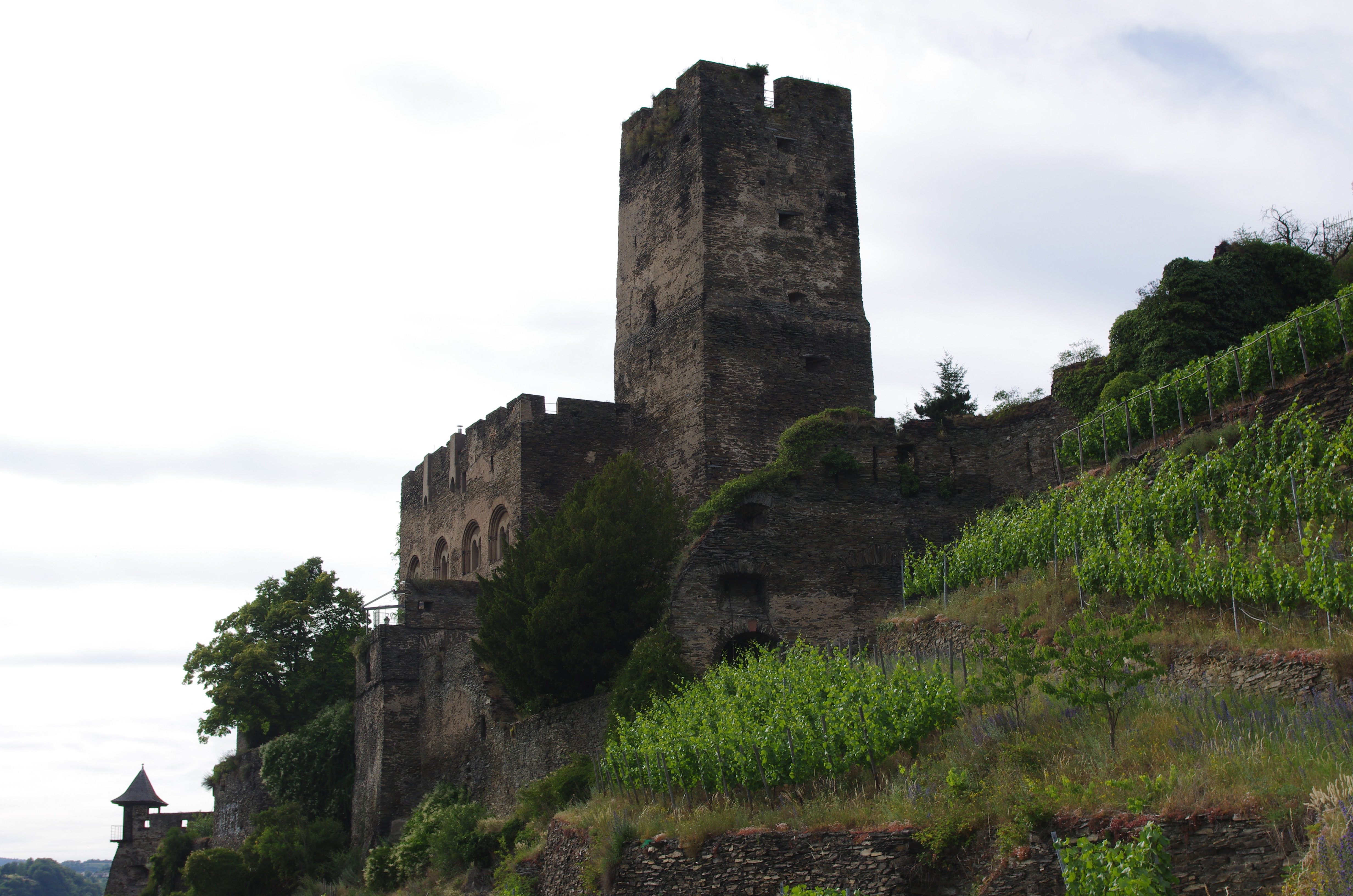"This excursion was a trip through significant parts of the Upper Middle Rhine Valley, including stops at several castles, a local vineyard, Loreley, and Bacharach. I strongly recommend bedding down in one of the larger more ""touristy"" areas as we legitimately could not find food/businesses open in Kaub after 6...other than an absolutely awful beer garden! Visit Bacharach and try the Riesling ice cream made with the local vintage, it is fantastic."