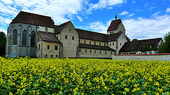 I visited this WHS in July 2014. I spent 1 night and 2 days here and had a great time exploring the island and the nearby Kostanz lake by bicycle. The loop round the island is an easy ride and after visiting the 3 churches and 3 museums, I cycled to the highest point of the monastic island to enjoy the panoramic view. The best church interior and frescoes are indeed the ones of St Georg. For conservation reasons, from May to September 2014, it's only possible to visit at 12:30 and 16:00 with a guided tour in German costing 2 euros.