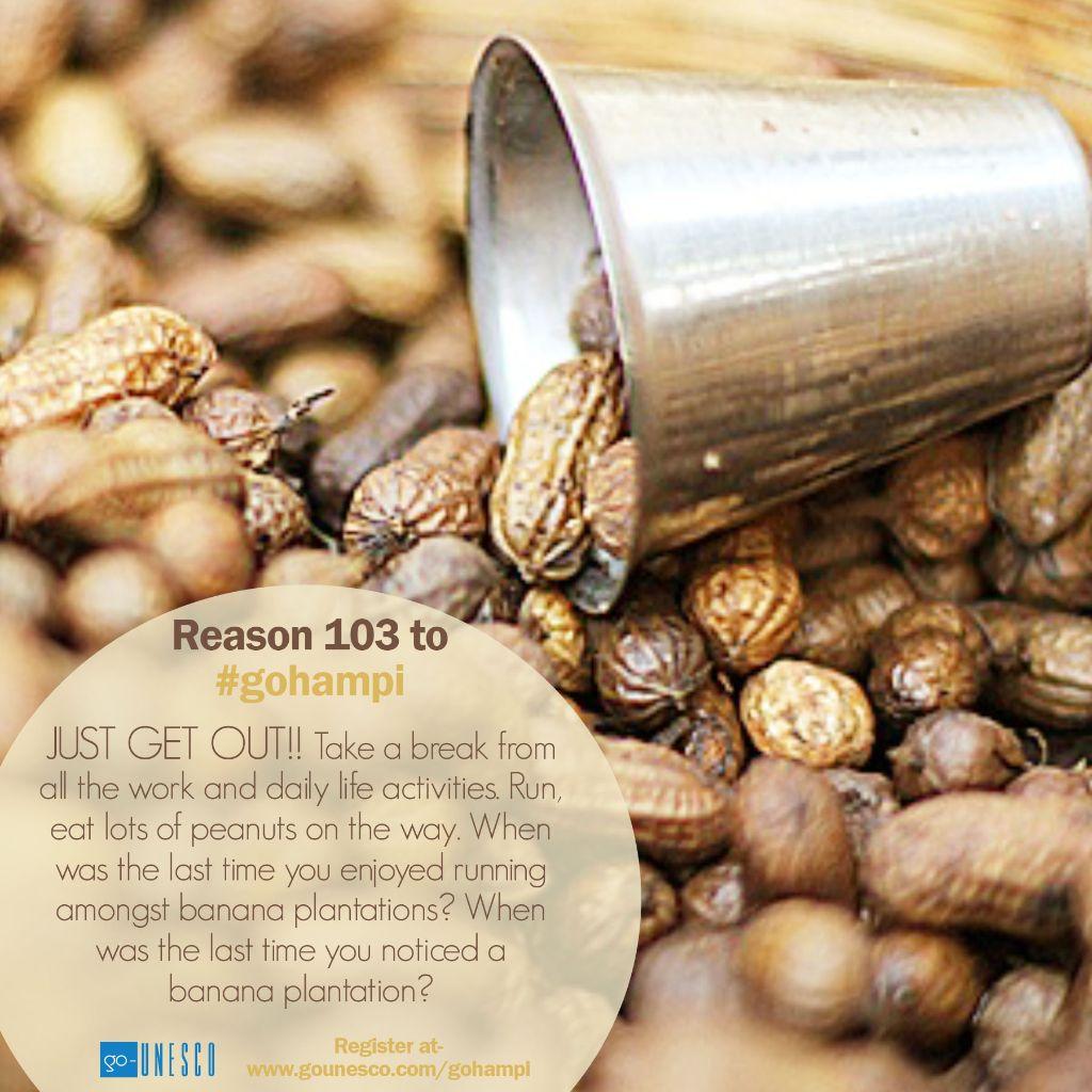 103 reason peanuts