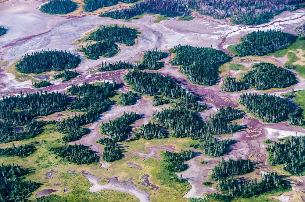 http://everything-everywhere.com/2014/07/29/unesco-world-heritage-site-275-wood-buffalo-national-park/