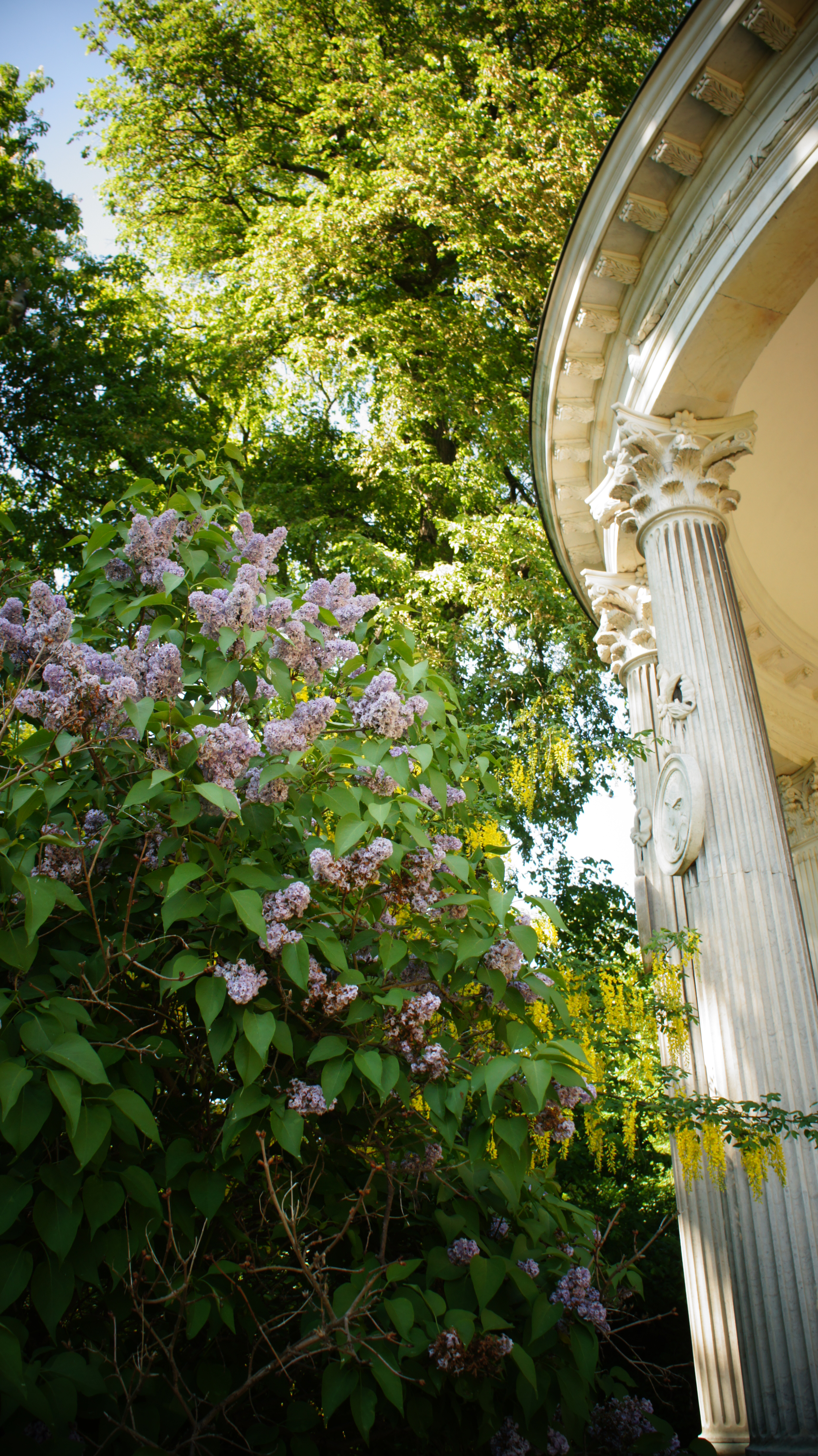 Potsdam's palace are extensive and wonderful, but so are their gardens. Even if you only have time walk around the beautiful greenery, the experience is highly recommended.