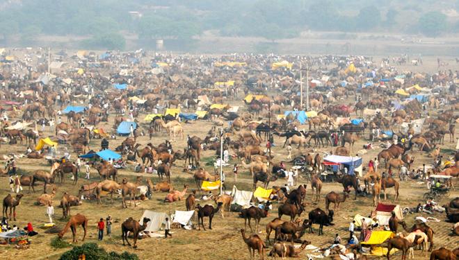 bateshwar