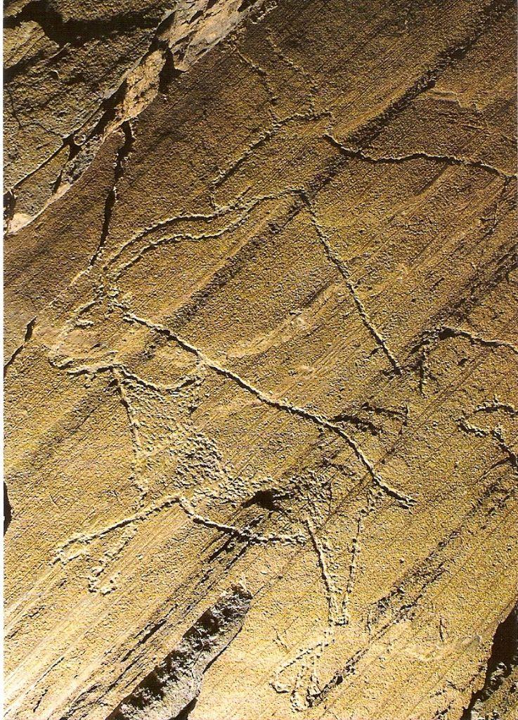 Rock art coa valley