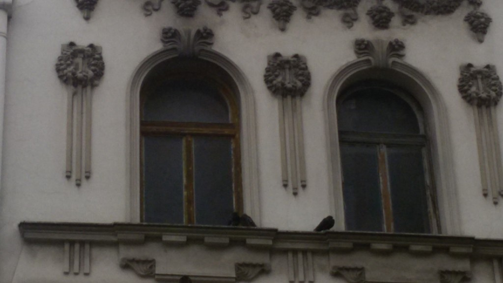 Pigeons in love with heritage :)