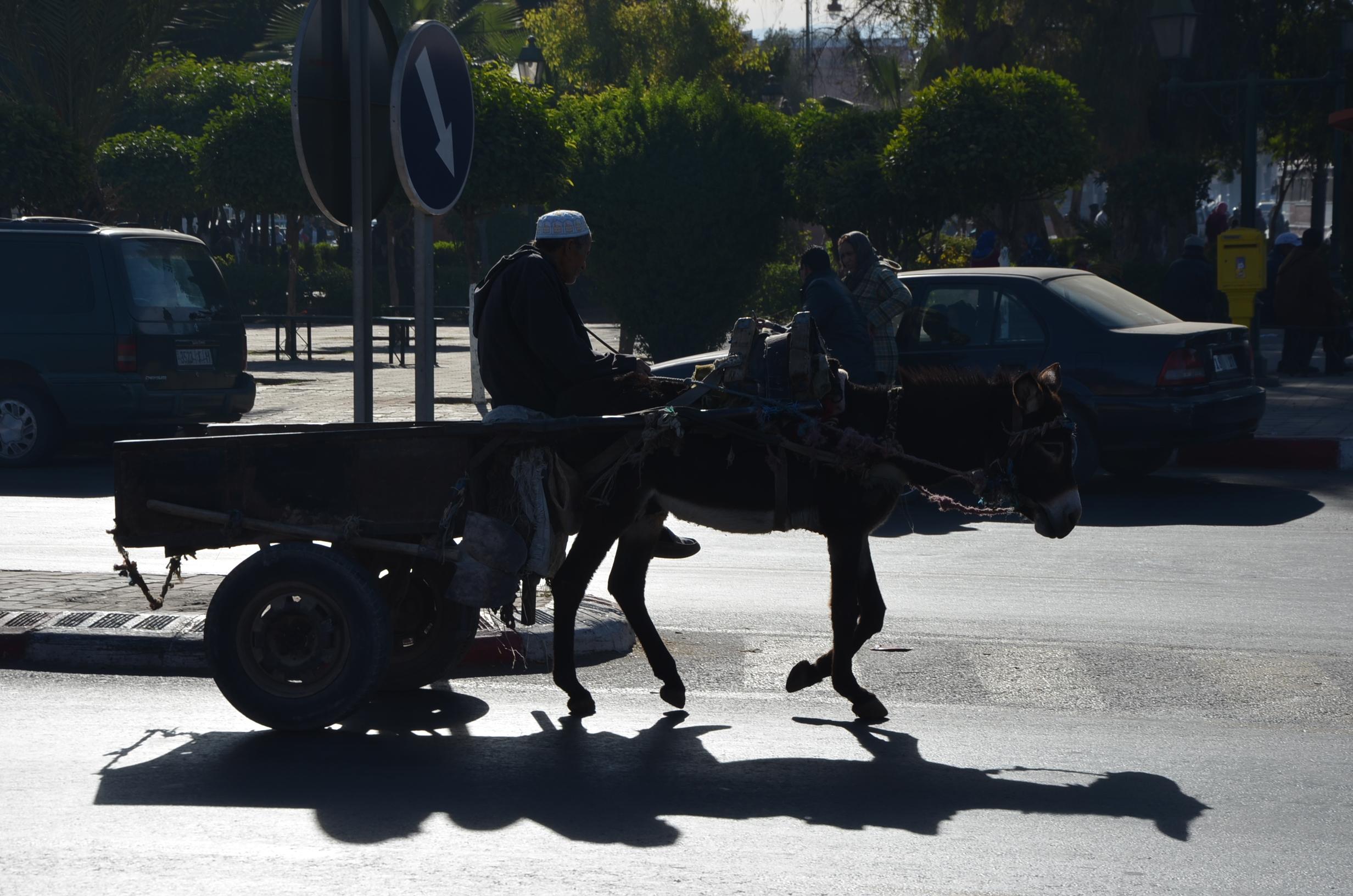 marrakesh transportation!