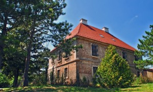 Castle Slos
