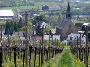Schengen: The wine-making village whose secret lies in its name