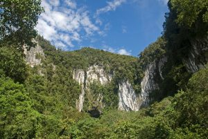 Gunung Mulu National Park